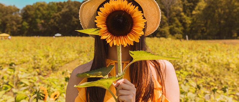 girl holding flower in flower field not avoiding bee stings